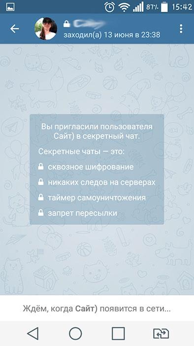 Как в телеграмме сделать секретный чат фото 143